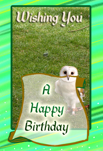 A Happy Birthday Owl Free Birthday Wishes ECards Greeting Cards 123 Greetings