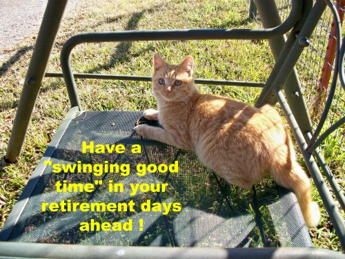 Retirement Wishes From A Cat Free Retirement ECards Greeting Cards 123 Greetings