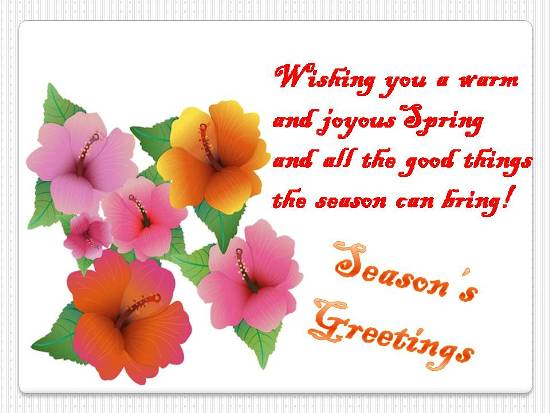 Cheerful Greetings For Loved Ones Free Flowers ECards