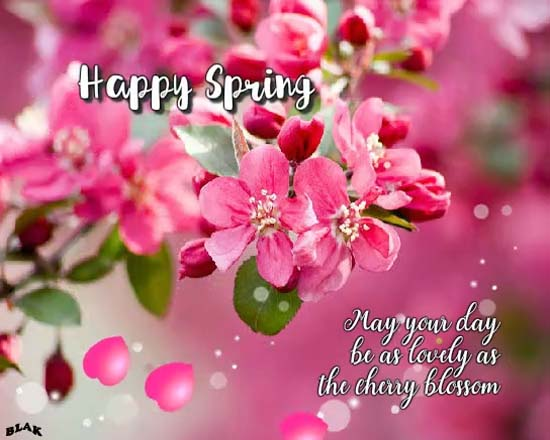 Cherry Blossoms Free Happy Spring ECards Greeting Cards 123 Greetings