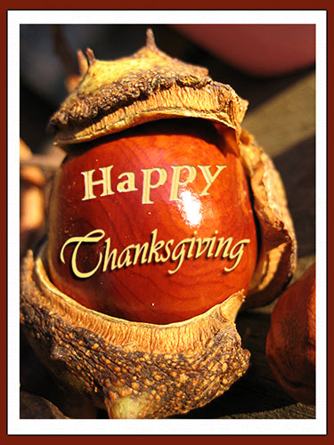 Happy Thanksgiving On A Horse Chestnut Free Happy Thanksgiving ECards 123 Greetings