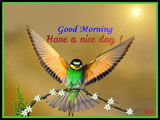 May You Have A Very Good Morning Free Good Morning ECards 123 Greetings