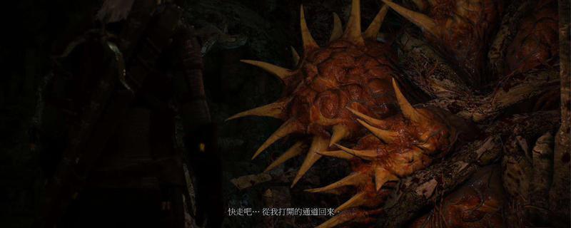 巫師3林中女巫完美結局 | 電玩01