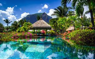 Обои природа, тропики, пальмы, гора скачать обои для ...