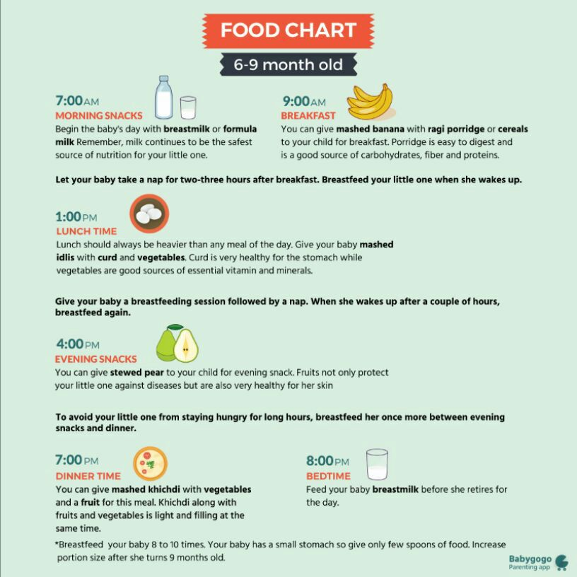 Food Schedule For 6 Month Old Indian Baby 6 Month Baby Food Chart