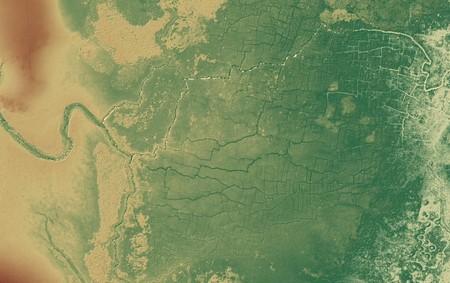 Las hierbas altas esconden otros secretos: acabamos de encontrar en la selva las cicatrices del poder de la civilización maya