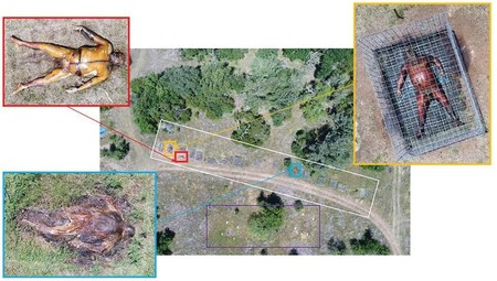 Forensic Anthropology Research Facility Areas With Uncaged Mostly Skeletonized Remains