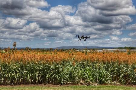 Los Agripreneurs Toman La Agricultura Al Asalto Con La Ciencia La Tecnologia Y El Big Data Como Sus Mejores Armas 5