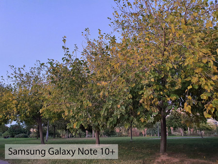 Samsung Galaxy Note 10plus Auto Dia 02