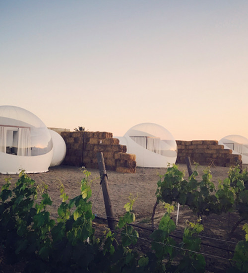 Campera Hotel Burbuja 16