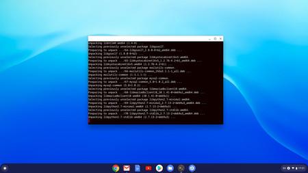 Chromeos Linux 14