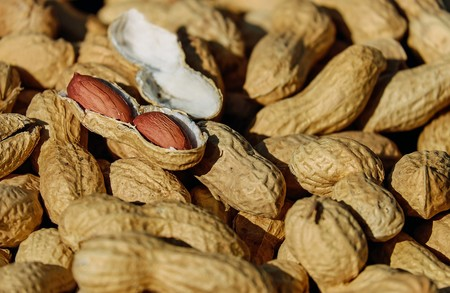 Nuts 1736520 1280 1
