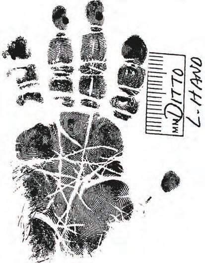 Manual Unico De Criminalistica 012