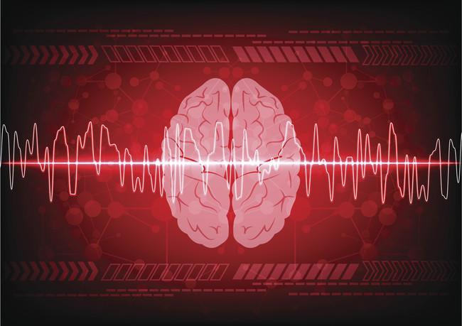 La Salud De Nuestro Cerebro: alimentos que nos ayudan a mantenerlo sano