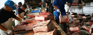 Japón vuelve a cazar ballenas, pese a que la mayoría de japoneses ya no tiene interés en comérselas
