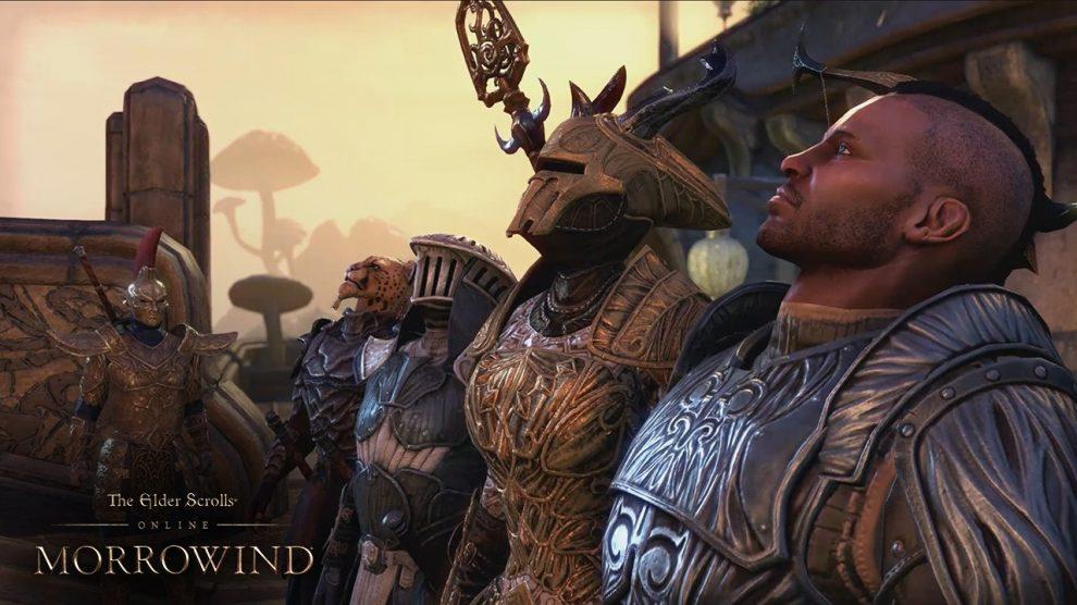 Resultado de imagen de the elder scrolls online warden