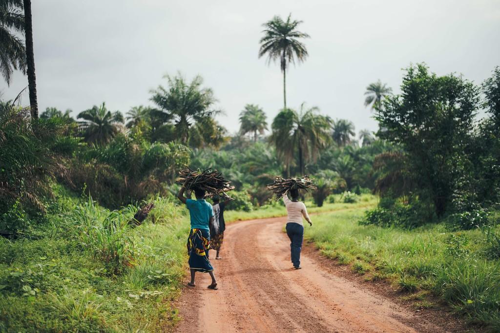 La cuenta atrás para acabar con la malaria ha empezado: así es como podemos erradicarla (si es que queremos hacerlo)