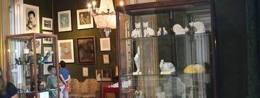 KattenKabinet: un excéntrico museo de gatos en Ámsterdam