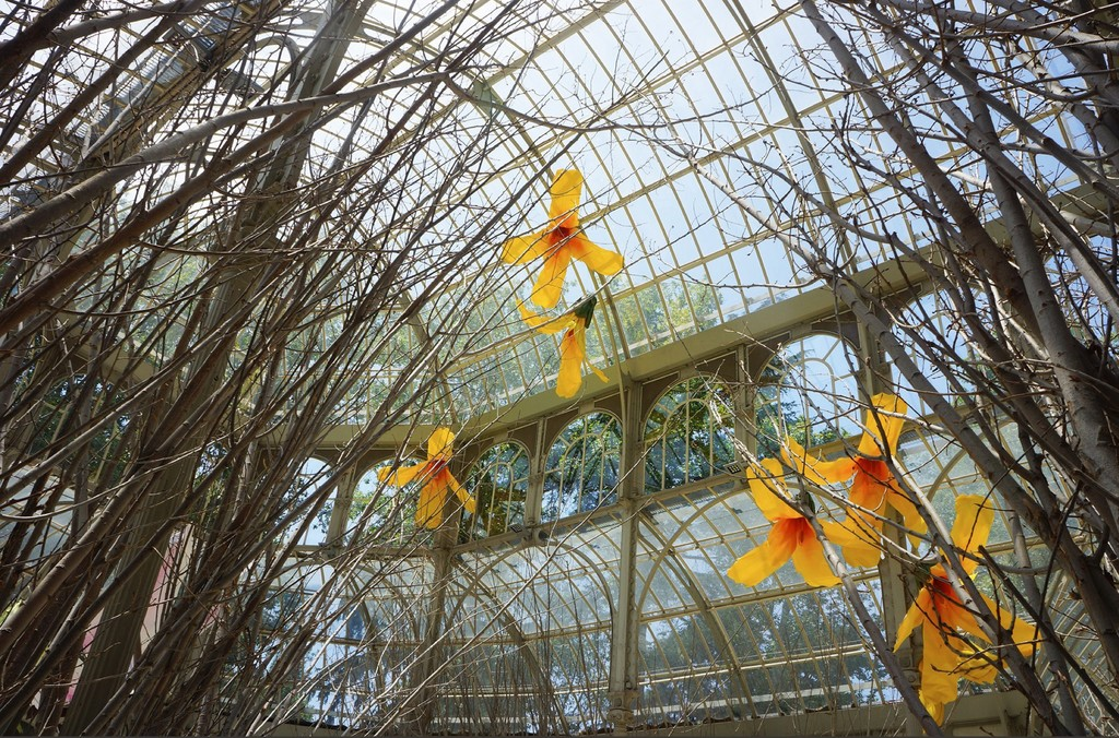 El Reina Sofía retoma sus exposiciones a lo grande, inundando de flores el Palacio de cristal