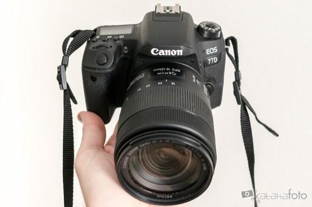 Canon77d 06636