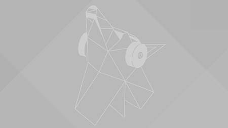 Disco Dingo Wp 4096x2304 Grey