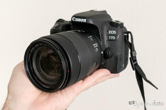 Canon77d 06635