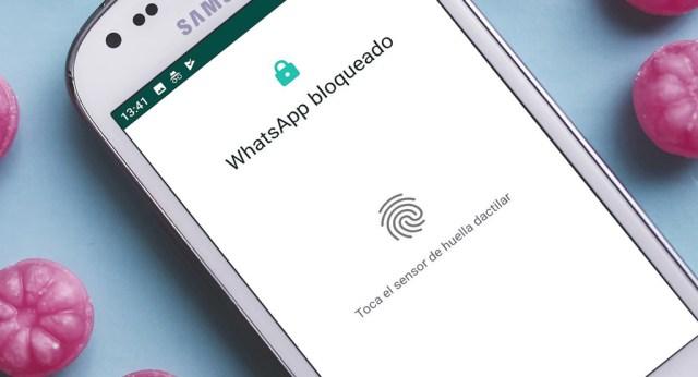 WhatsApp para <stro data-recalc-dims=