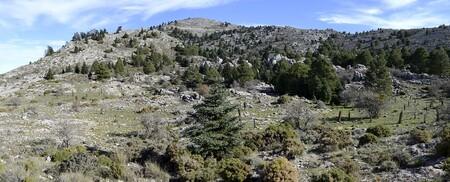 1920px Panoramica Area De Turquillas En Sierra De Las Nieves Malaga