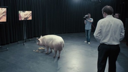 Pm And Pig