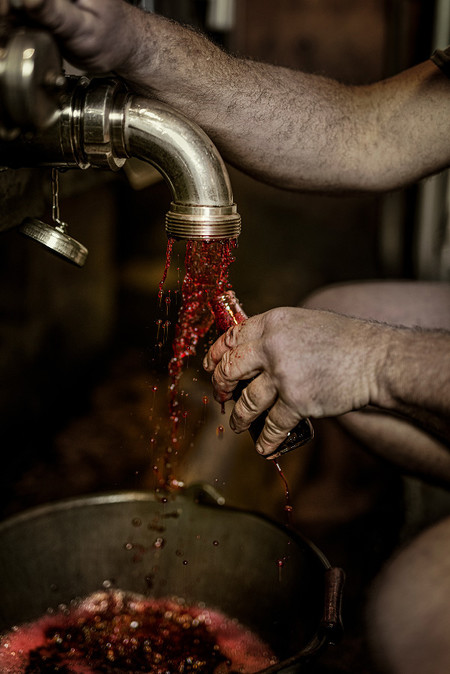 Errazuriz Wine Photographer Of The Year Produce Patrick Desgraupes Clos Saint Patrice Sample