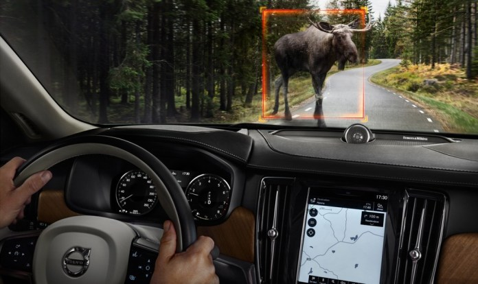 Volvo Animal Detection 1