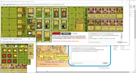 Play Agricola