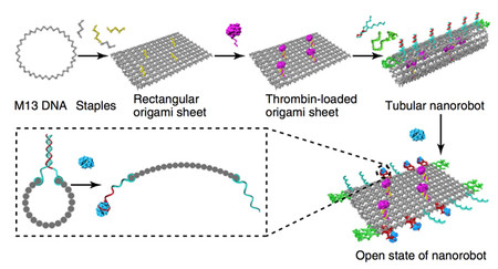 Nano robots cáncer