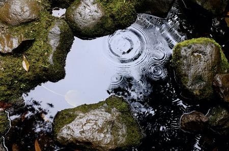 Está lloviendo plástico: cada vez se encuentran más fibras de microplásticos en muestras de lluvia