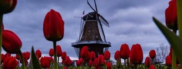 La justicia holandesa sentencia que la lucha contra el cambio climático no es optativa y ordena un recorte de emisiones del 25%
