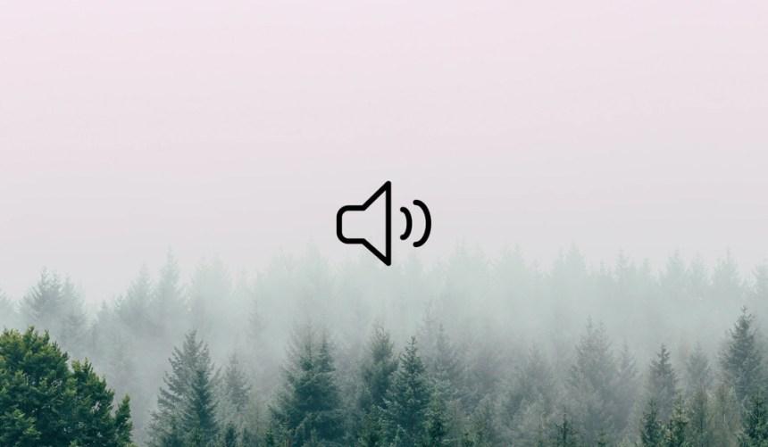 El bosque en tus oídos: disfruta y ayuda a que siga creciendo este mapamundi sonoro de la naturaleza