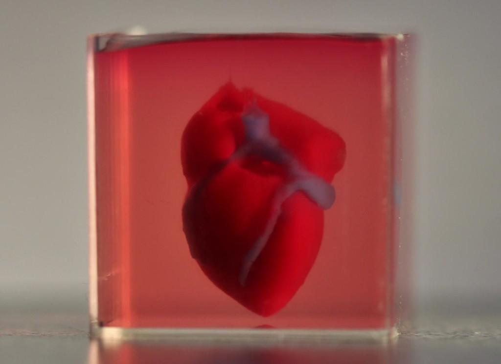Este es el 1° corazón impreso en 3D con células del propio paciente