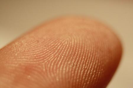Fingerprint Detail On Male Finger