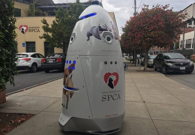 Permalink to Una ONG animalista de San Francisco usa un robot para impedir campamentos de personas sin hogar