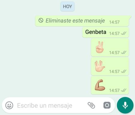 Borrar Mensajes Whatsapp