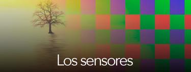 Todo sobre fotografía terminal (5): los sensores fotográficos