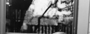 Ursula K. Le Guin, una extraordinaria novelista que muestra todo lo bueno que tuvo el siglo XX en fantasía y ciencia ficción