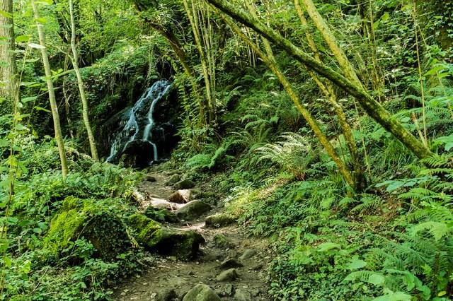 Cascadas 1