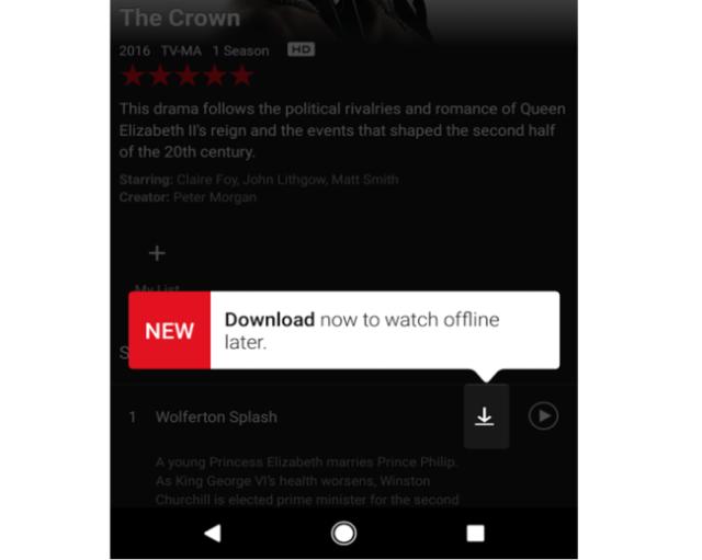 Netflix Modo Offline