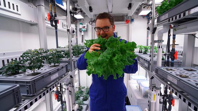 Permalink to Acabamos de cultivar una lechuga en el lugar más inhóspito del mundo: el primer paso para poder comer tomates en el espacio