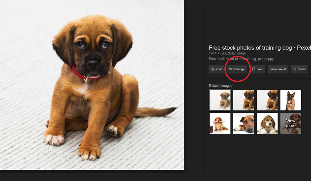"""Permalink to Revive el botón de """"ver imagen"""" en Google Imágenes con estas extensiones"""
