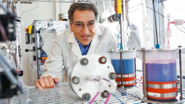 Harvard University's Michael J. Aziz has helped to develop a metal-free flow battery that relies on the electrochemistry of naturally abundant, small organic molecules similar to ones found in rhubarb.