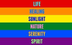 The LGBT flag