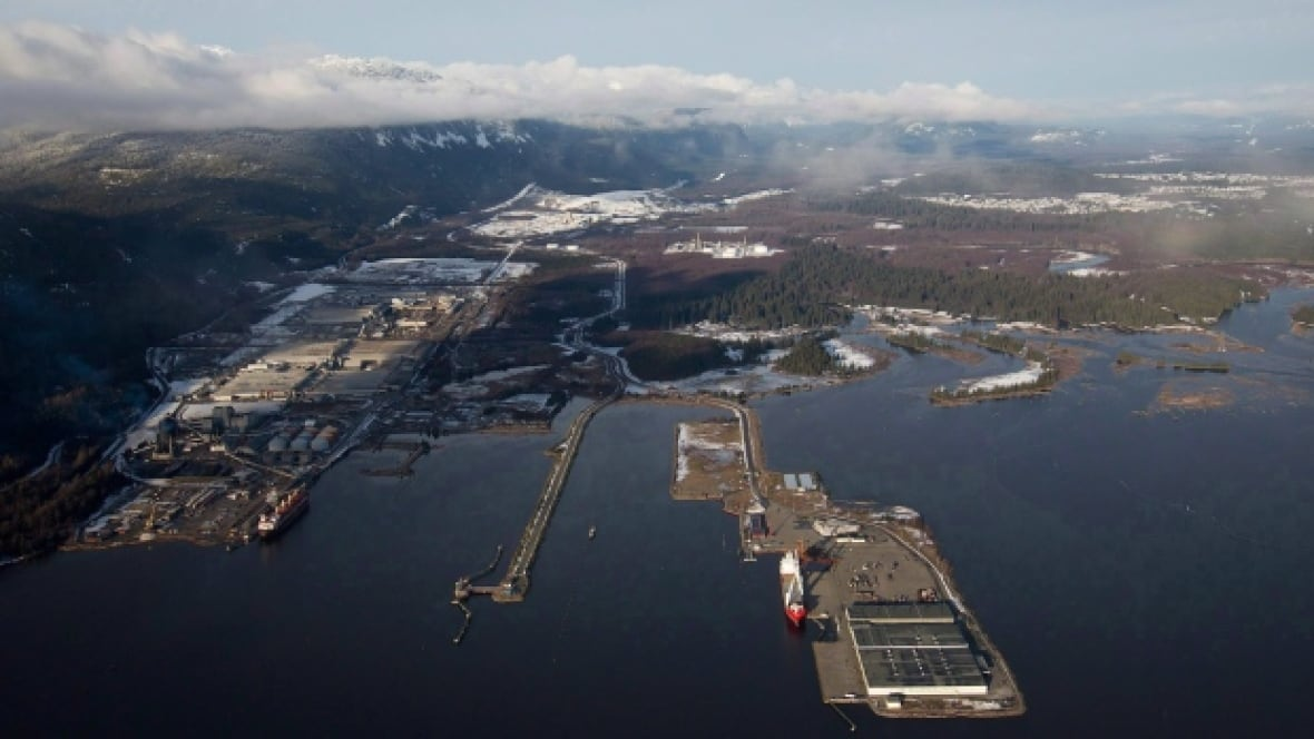 Bad Air From Rio Tinto Aluminum Smelter Forcing Her To
