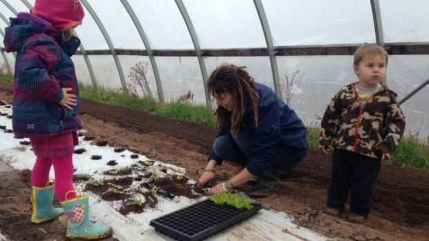 Eva Rehak and her kids plant lettuce at their farm in St. Maurice, N.B.